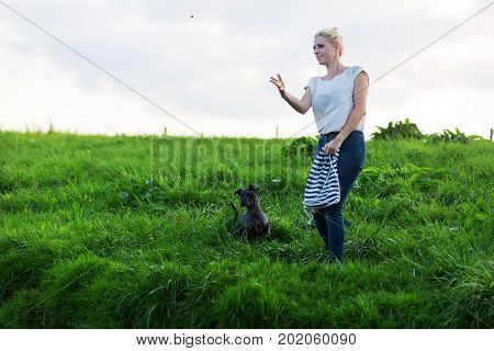 Woman Plays With A Terrier Hybrid Dog Riverside