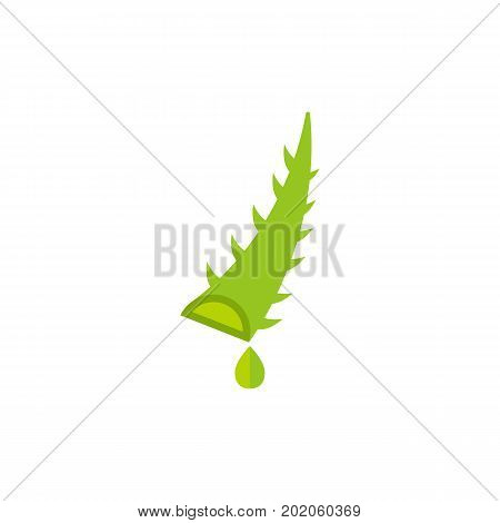 Vector icon of aloe vera leaf. Flower, juice, scent. House plants concept. Can be used for topics like pharmacy, health, botany