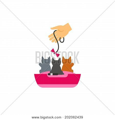 Icon of hand holding bow and playing with kittens. Fun, leisure, pets. Cat care concept. Can be used for topics like pet care, pet shop, therapy
