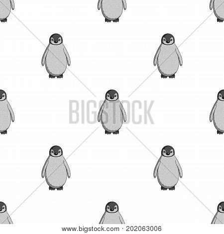 Penguin.Animals single icon in monochrome style vector symbol stock illustration .