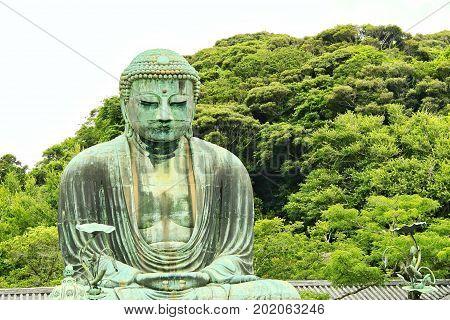 The Great Buddah of kamakura with trees