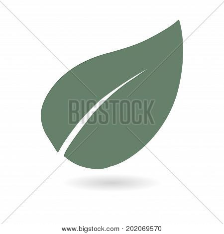 Leaf icon. Fresh natural product. Organic product symbol. Flat design style.