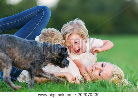 Woman Romps With Her Two Sons And A Dog On The Grass