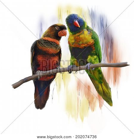 Digital Painting of  Lorikeet Parrots
