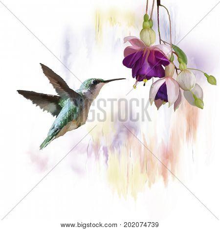 Digital Painting of  Hummingbird and flowers