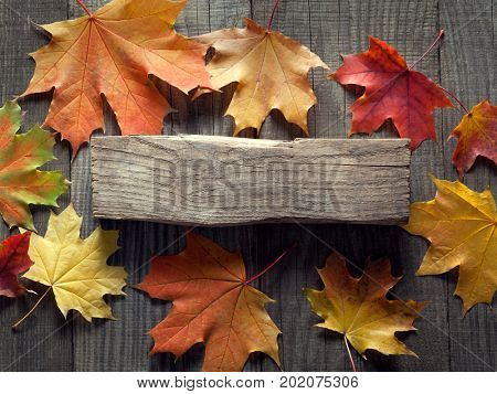 autumn background with signboard, orange leaf on old grunge wood deck, copy place for inscription, top view, tablet for text. (top view)