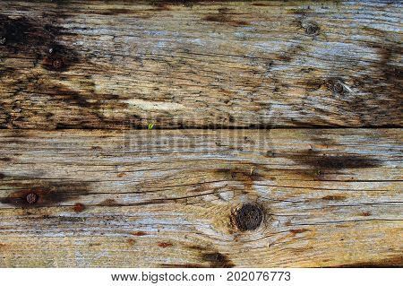 Wooden fence. The wooden table. A wall of wood. Unpainted wooden background. Abstract background. Wall texture background