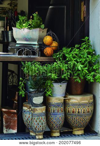 Drums reused. Decorative set using old drums, plants and fruit.