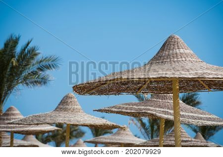 Summer vacation and traveling. Sunny blue sky at resort. Beach straw umbrella with palm tree. Relax and holiday. Umbrella and beach.