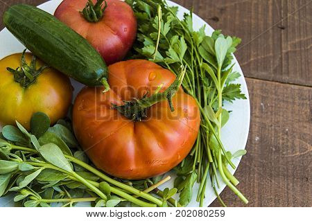 Parsley in the plate, scented and natural organic tomatoes and cucumber paintings, breakfast vegetables on the wooden flor