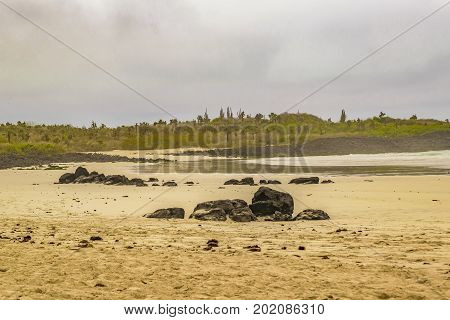 Tortuga Bay Beach, Galapagos, Ecuador