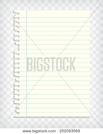 Empty lined note book page with torn edge. Paper piece with lines. Notepaper mockup. Graphic design element for text, advertisement, doodle, sketch, scrapbooking. Realistic vector illustration