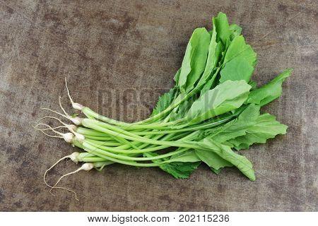 fresh turnip tops (turnip greens) on a grungy metal background