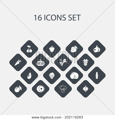 Set Of 16 Editable Berry Icons. Includes Symbols Such As Tropical Fruit, Fruits, Root Vegetable And More