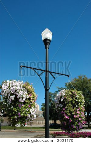 Light Post And Flowers