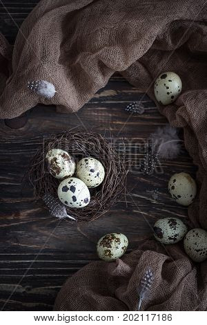Quail eggs and feathers in nest on the rustic wooden background. Top view