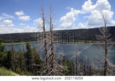 Blue Navajo lake landscape in Utah USA