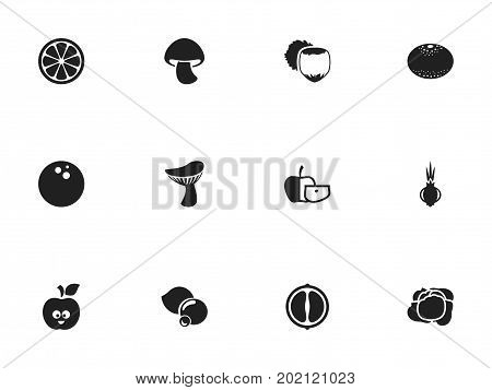 Set Of 12 Editable Vegetable Icons. Includes Symbols Such As Jonagold, Filbert, Bilberry And More