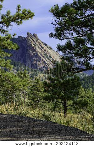 Boulder Flatirons peeking through pine trees while traveling on a gravel road.