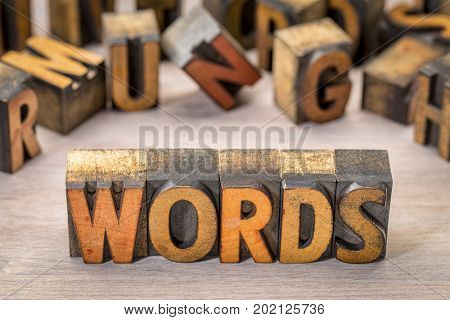 words text abstract in vintage letterpress wood type printing blocks