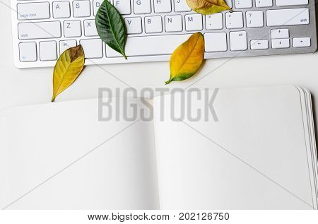 Autumn workplace with fallen leaves, keyboard and notebook, view from above