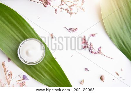 White cream bottle placed Blank label package for mock up on a green foliage background and flowers. The concept of natural beauty products.