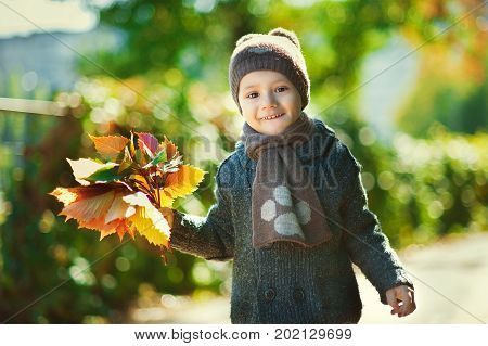 Beautiful little boyl happy playing with fallen leaves