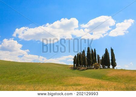 VAL D'ORCIA ITALY - JUNE 06 2017: Val d'Orcia cypresses view Chianti Tuscany.