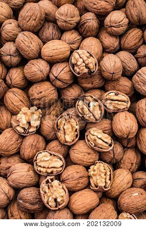 Walnuts For Sale