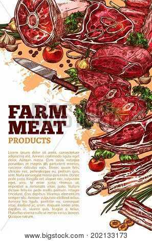 Farm fresh meat poster template for butchery shop or farmer market. Vector meat products of beef loin or tenderloin filet, mutton ribs or steak and pork meaty ham brisket products