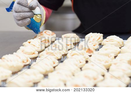Picture the hands squeeze the mayonnaise on the prepared pastry into the oven.