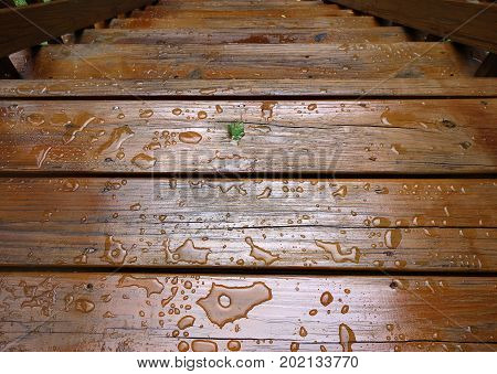 Outdoor wooden stairs with water beading showing weather proofed or stained wood