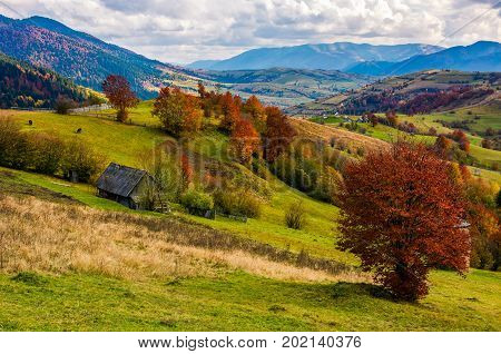 Stunning Rural Landscape In Mountains