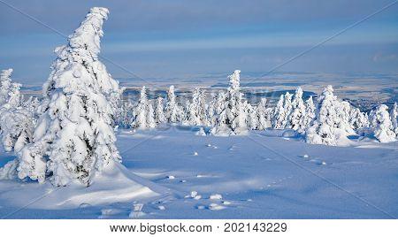 Winter on Brocken Mountain in Harz National Park,Saxony-Anhalt,Germany
