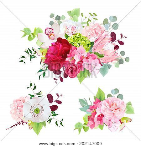Summer mixed bouquets of peony, pink hydrangea, protea, red rose, orchid, poppy, camellia, berry and bright green leaves. Vector bunch of various flowers. All elements are isolated and editable.