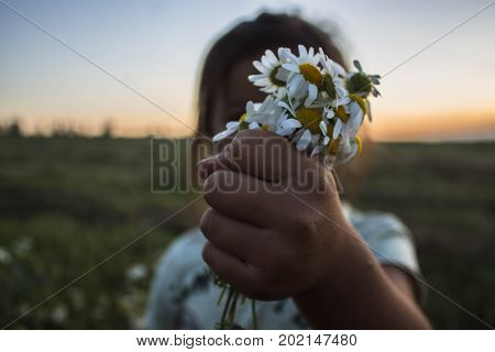 a gild holding daisies in her hand