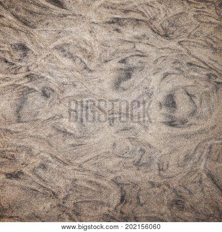 Wet Shore Sand, Square Background Photo