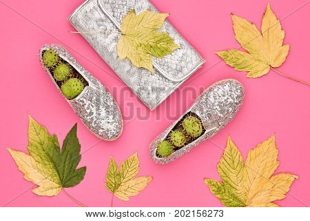 Autumn Arrives. Fall Fashion Glamour Lady Look.Trendy Handbag Clutch. Fashion Stylish Glamour Shoes. Yellow Fall Leaves on Pink
