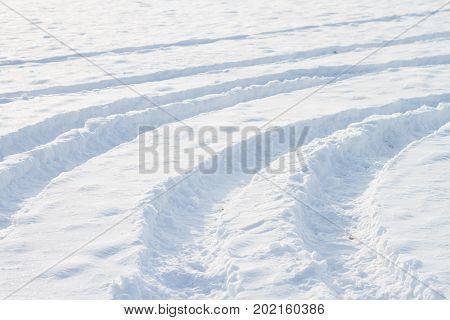 Frozen Details Of Snowy Landscape