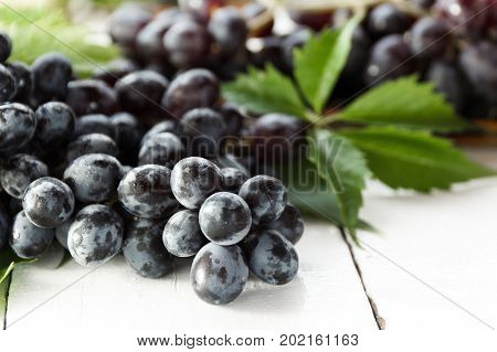 Ripe dark grapes with leaves on white background. Selectiva focus