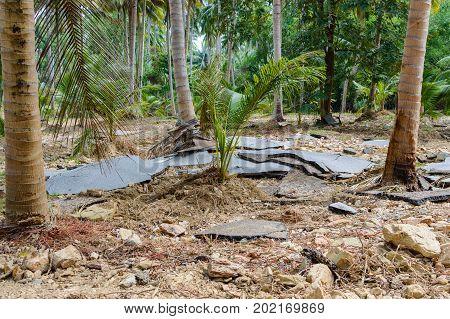 Damaged Asphalt Road In Rural Of Thailand After Flood. Consequences Of Flood