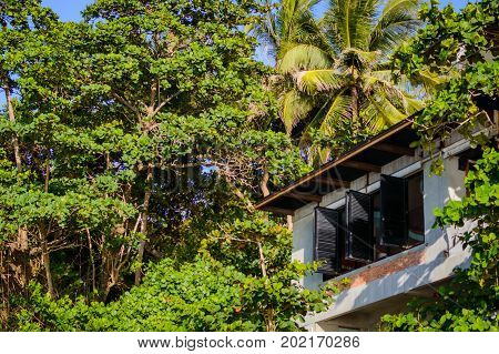 Windows With Shutters On Bungalow Resort In Jungle Forest