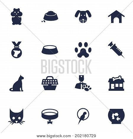 Collection Of Neckband , Sitting, Veterinarian Elements.  Set Of 16 Pets Icons Set.
