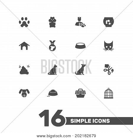 Collection Of Cat, Medallion, Birdcage And Other Elements.  Set Of 16 Pets Icons Set.