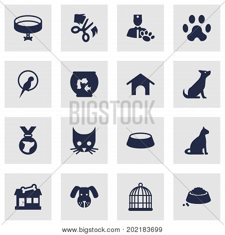 Collection Of Head, Fishbowl, Cat And Other Elements.  Set Of 16 Pets Icons Set.