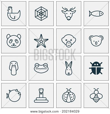 Zoo Icons Set. Collection Of Baboon, Moose, Marsupial And Other Elements