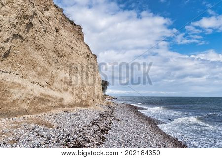 Langeland beach Dovnsklint south of Gulstav Mose with trees. The cliffs are a polular spot for birdwatching