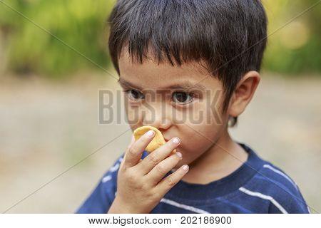 Portrait of Asian little boy eating crisp rice outdoor
