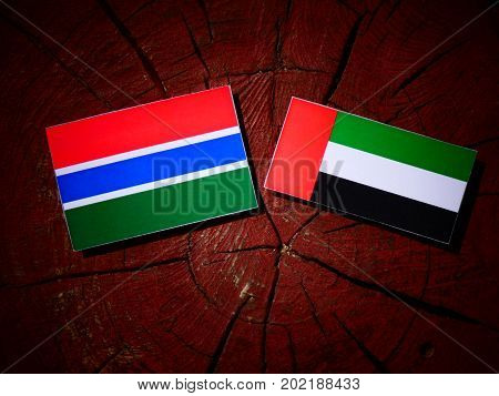Gambian Flag With United Arab Emirates Flag On A Tree Stump Isolated