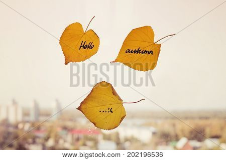 Yellow Dry Leaf With Inscription Autumn Written On It